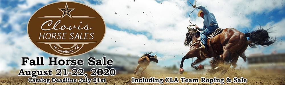 CLA Fall Horse Sale